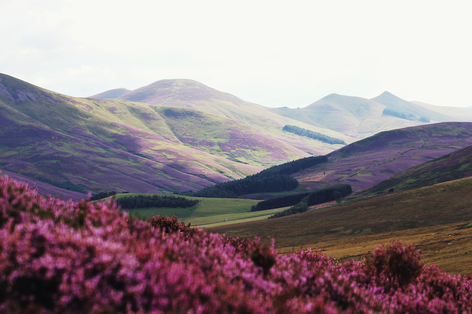 Hills in the Scottish countryside