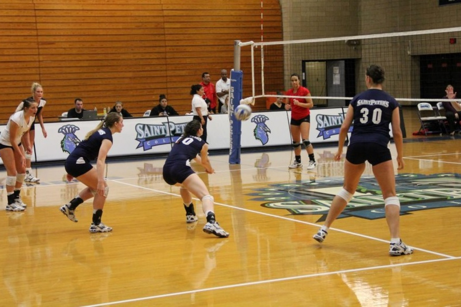 Reinhart_Volleyball
